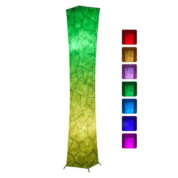 Chiphy 64 inches color changing floor lamp